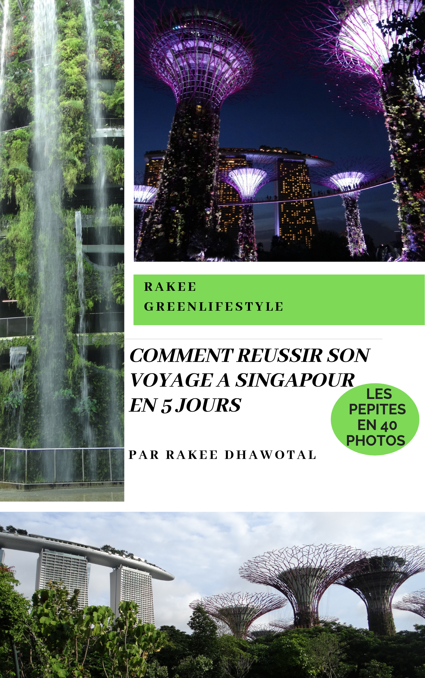 ebook singapour
